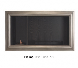 Модуль TV Ego Zeus CPS102